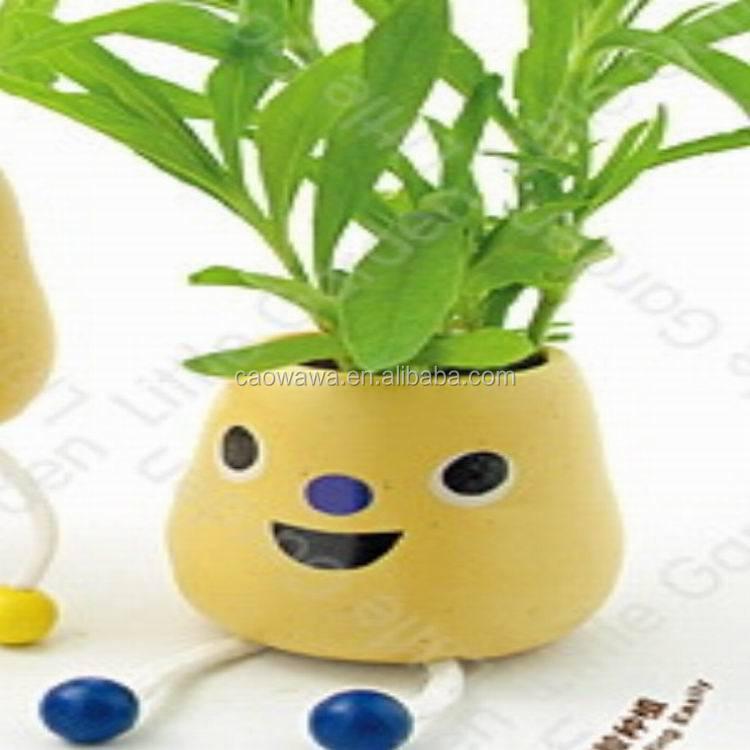pots en c ramique de gros pour les plantes mini pomme pot de fleur pots fleurs. Black Bedroom Furniture Sets. Home Design Ideas