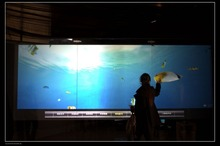 84 inch Interactive touch foil, touch screen film, 10 points multi touch foil film