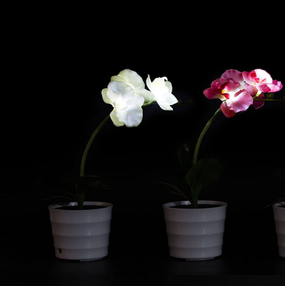 Lights & Lighting Bedroom Hotel Garden Office Outdoor Potted Plant Fake Phalaenopsis Led Decorative Flower Indoor Energy Saving Home Solar Light