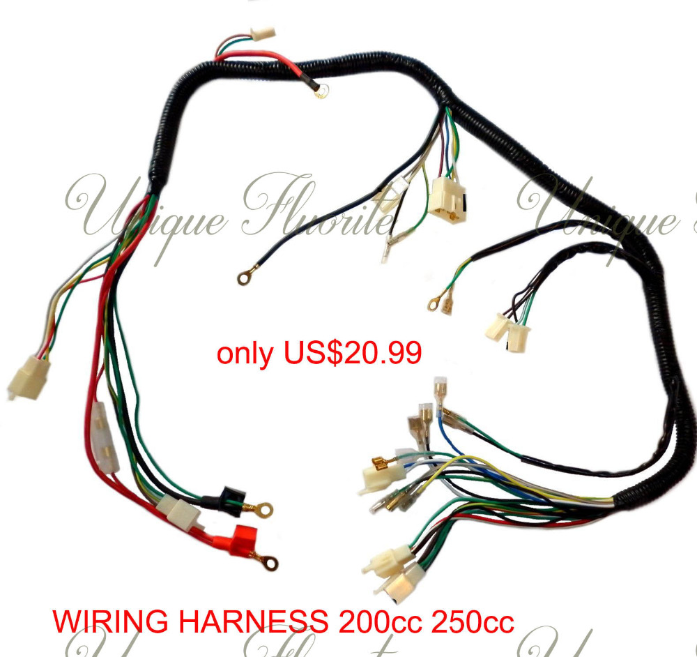 quad wiring harness 200 250cc chinese electric start. Black Bedroom Furniture Sets. Home Design Ideas
