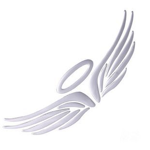Aliexpress.com : Buy Fashion Angel/Eagle wings Car sticker ...