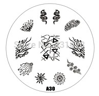 2015 new A Series A30 Nail Art Polish DIY Stamping Plates Image Templates Nail Stamp Stencil