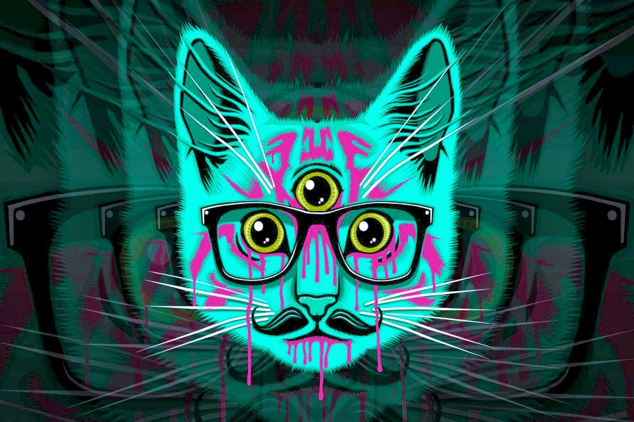 Living room bedroom home wall decoration fabric poster psychedelic hipster cat artistic animal fantasy