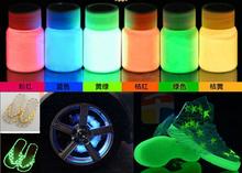 100g lot Luminous Pigment Phosphor Powder photoluminescent Pigment 10 ColorsX10g Glow at Night Coating Nail Polish