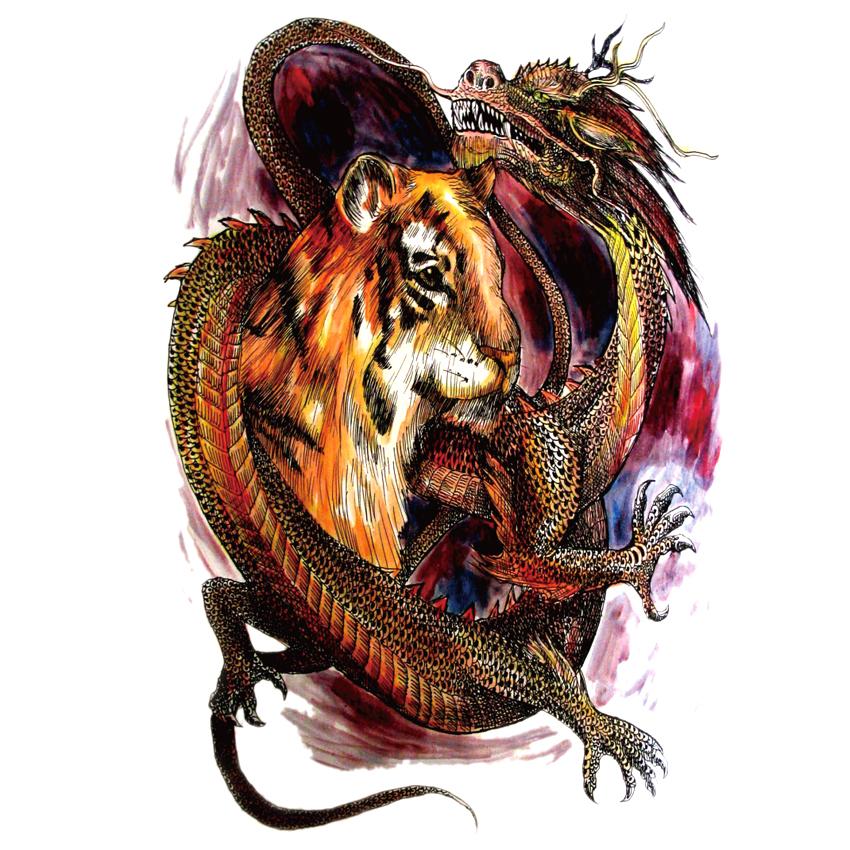tiger man and dragon woman relationship