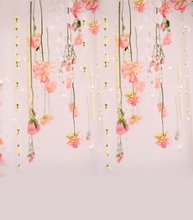 3X4ft free shipping  vinyl cloth photography backdrops  newborn  computer Printing background for photo studio cm6714