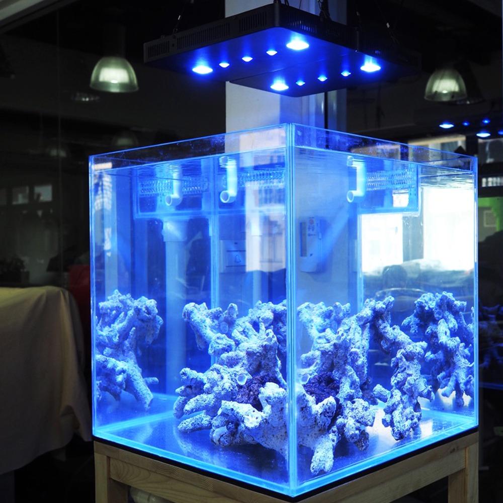 buy hot 169w cob lens aquarium led lighting dimmable full spectrum led aquarium. Black Bedroom Furniture Sets. Home Design Ideas