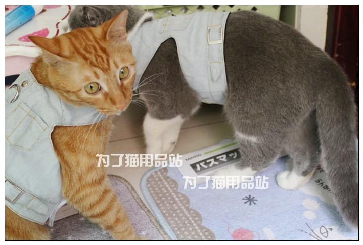 Waistcoat Cowboy Chest Straps Pet Cat Rope The Slip Cat Garfield Mi