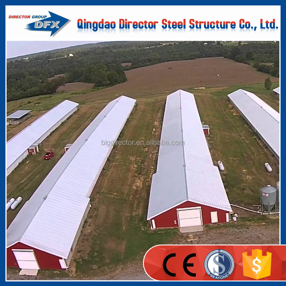 Modern Automatic Broiler Poultry Farm Design
