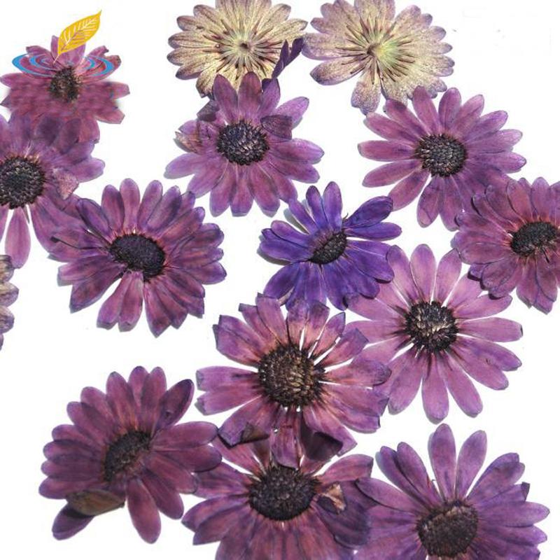 achetez en gros art fleurs pourpres en ligne des grossistes art fleurs pourpres chinois. Black Bedroom Furniture Sets. Home Design Ideas