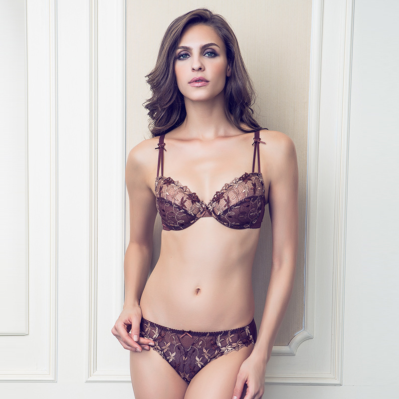 7a0d8dfac51 2017 France Brand transparent sexy bra set plus size intimate Women lace  ultra-thin black