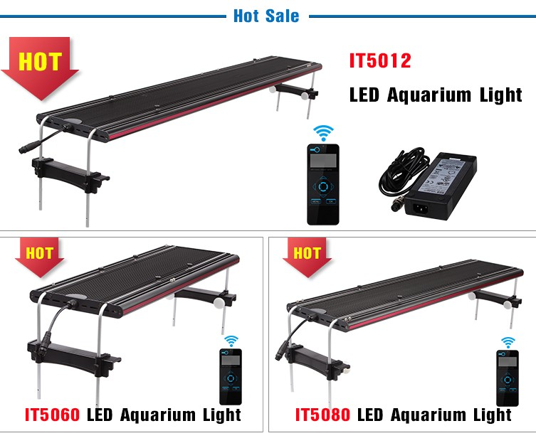Wireless Dimmable Sunset Sunrise 90w Led Aquarium Light: Evergrow 2018 Wireless Programmable 48inch Coral Reef
