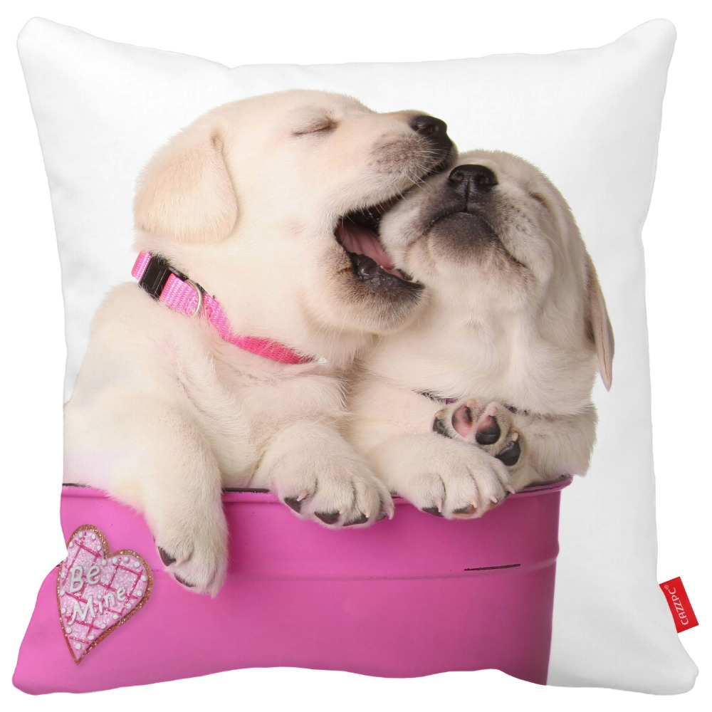 Cute Valentine Puppies Pet Dog In A Pink Container With A