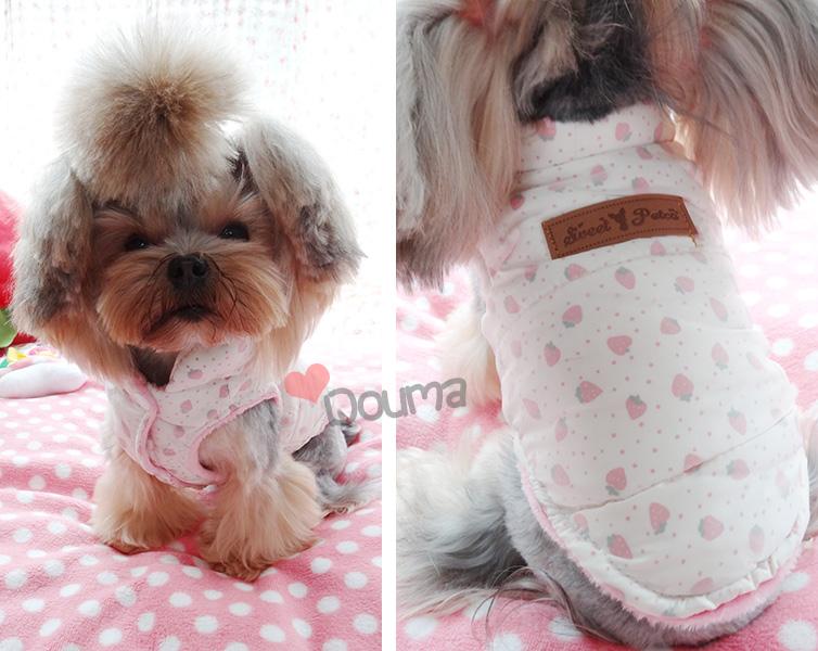 Petco Dog Clothes Reviews - Online Shopping Petco Dog