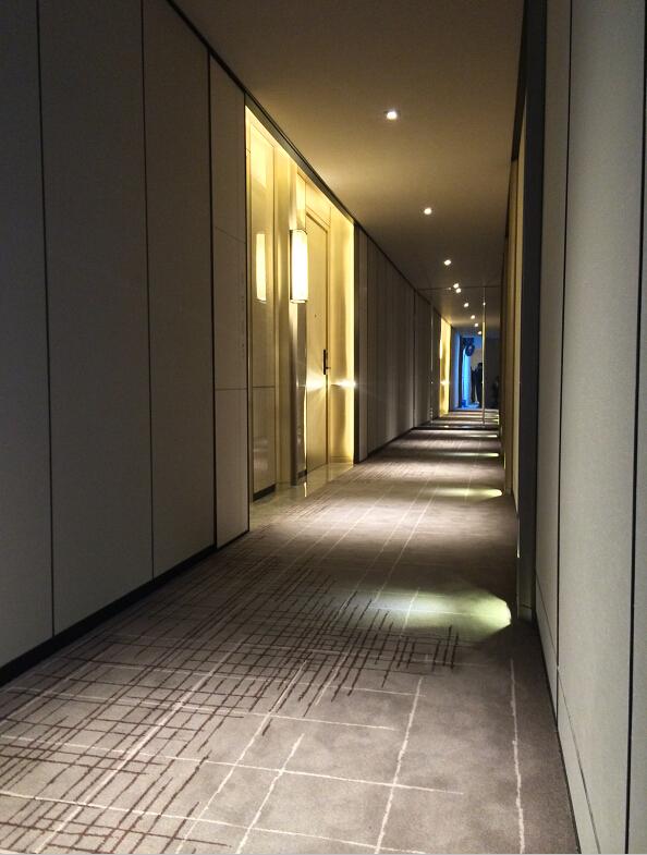 Nylon6 6 Custom Design Pattern Printed Hotel Corridor