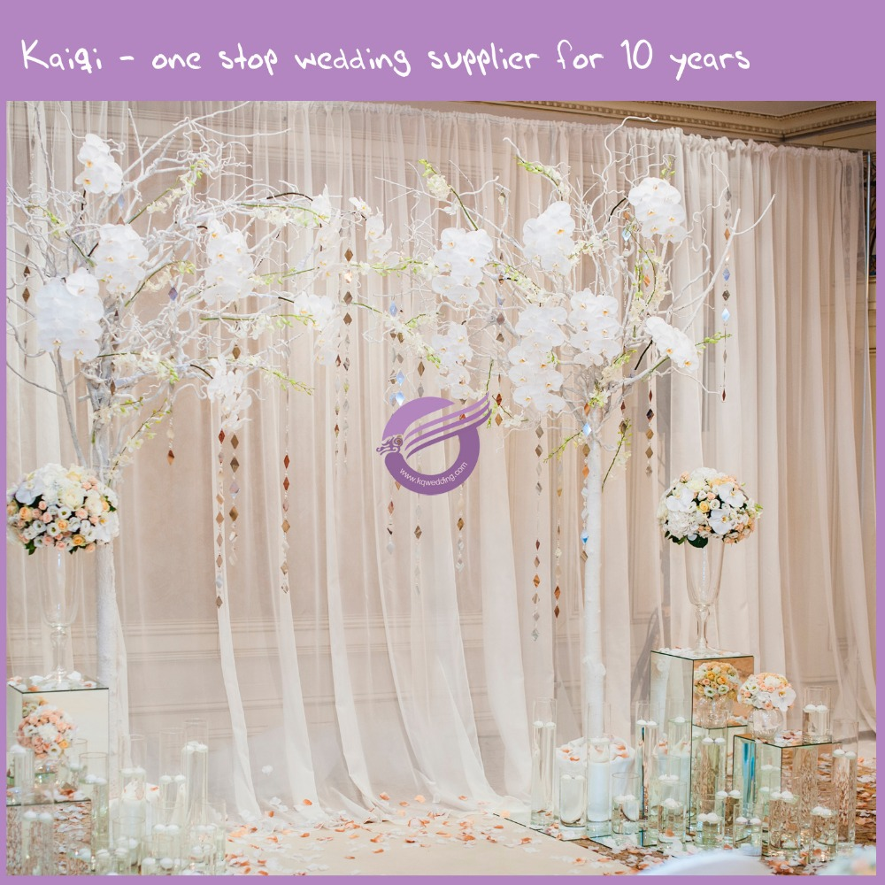 Voile Backdrop K6785 Jpg