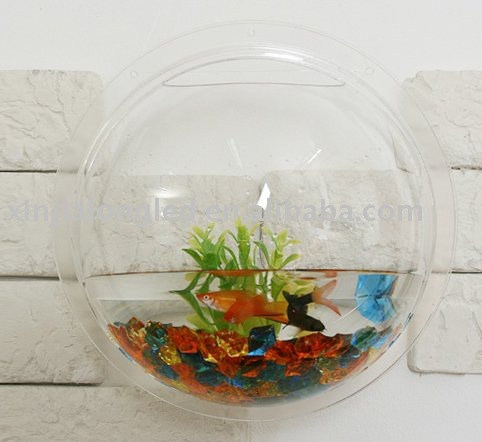 an der wand befestigter fisch acrylsauerbeh lter kleiner fischbeh lter rundes wandaquarium. Black Bedroom Furniture Sets. Home Design Ideas
