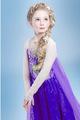 Brand NEW elsa dress kids Dress Custom made Movie Cosplay Dress Summer Girls Dress Princess Costume