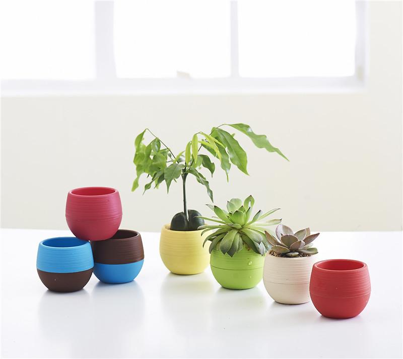 Gardening Mini Plastic Flower Pots