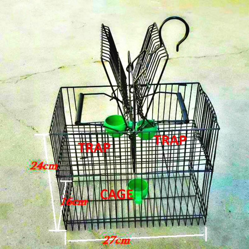 Online Buy Wholesale Trapping Supplies From China Trapping