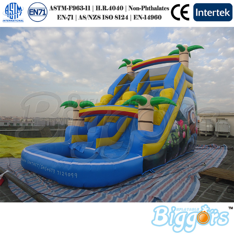 Inflatable Slide Where To Buy: Popular Inflatable Water Slides For Sale-Buy Cheap