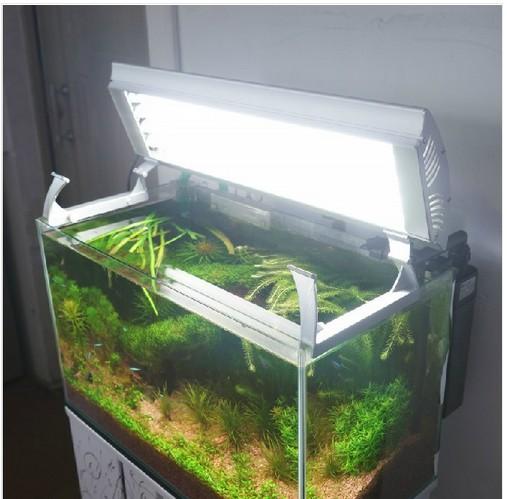 Popular Aquarium Plant Holder Buy Cheap Aquarium Plant