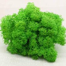 20 г натуральное мох искусственное растение вечный мох украшение для дома и сада DIY цветочный материал микро Ландшафтные аксессуары(Китай)