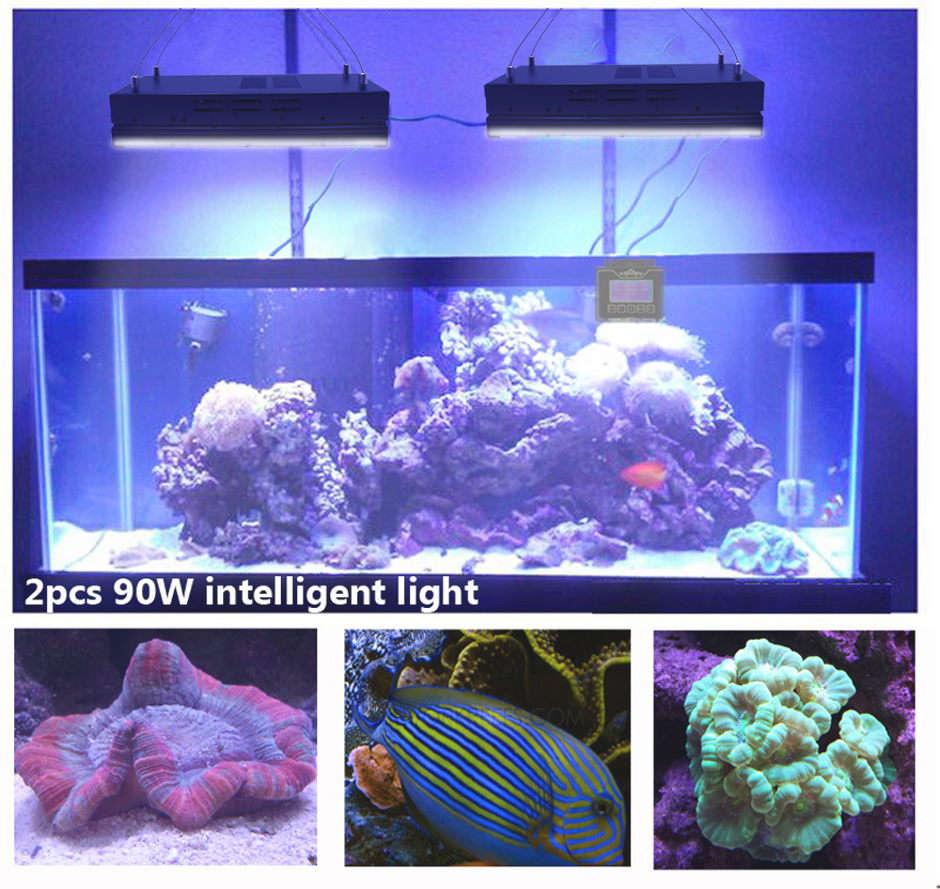 Wireless Dimmable Sunset Sunrise 90w Led Aquarium Light: Popular Moon Timer-Buy Cheap Moon Timer Lots From China