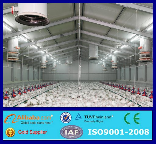 Design Modern Chicken Farms,Poultry House Shed Farm Design