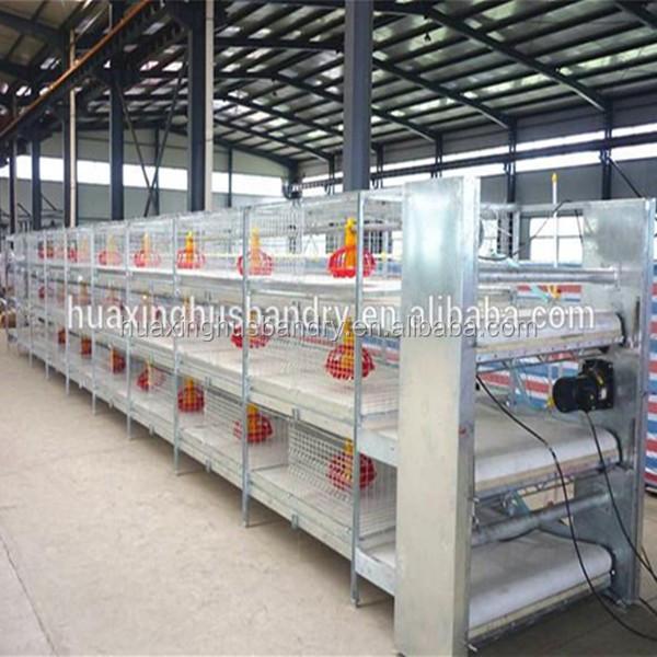 H Type Automatic Chicken Breeding Cage Chicken Broiler