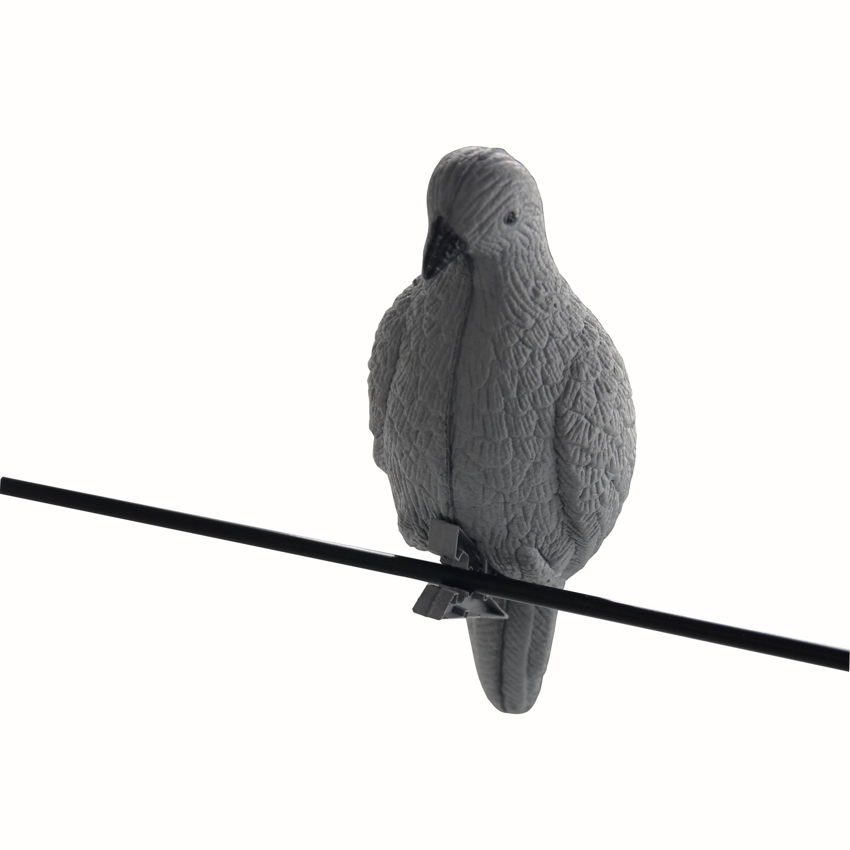 iscas para pombos vender por atacado iscas para pombos comprar por atacado da china online. Black Bedroom Furniture Sets. Home Design Ideas