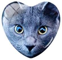 Стеклянные кабошоны TAFREE 25 мм в форме сердца с изображением кошачьих глаз, для самостоятельного изготовления ювелирных изделий, аксессуары ...(Китай)