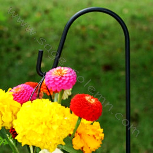 Park Hanging Flower Basket Shepherd Hook Buy Park