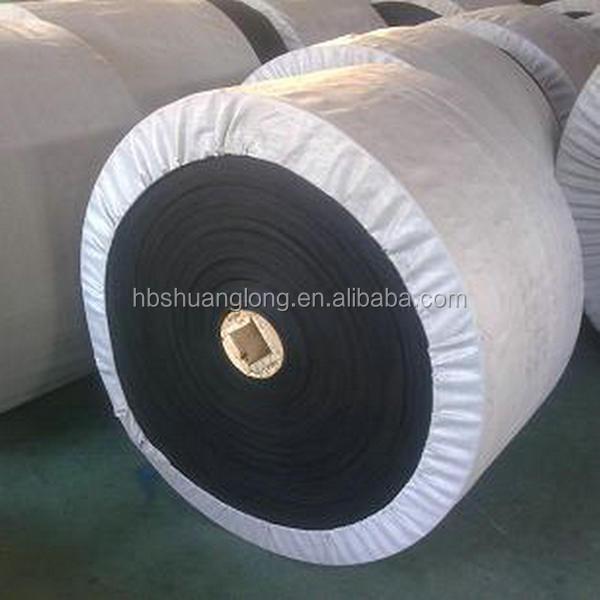 Meter Nylon Conveyor 32
