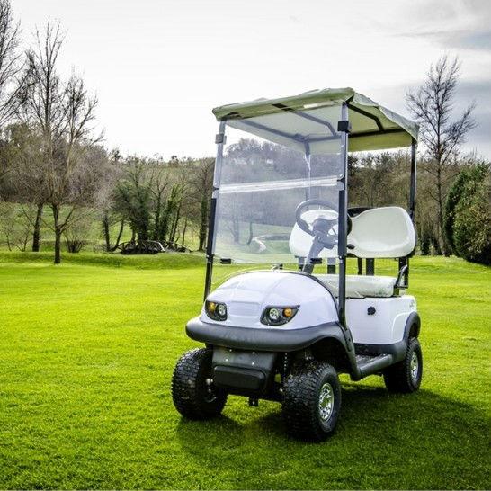 club de voiture 2 places petite voiturette de golf avec l 39 am rique du contr leur curtis et 36v. Black Bedroom Furniture Sets. Home Design Ideas