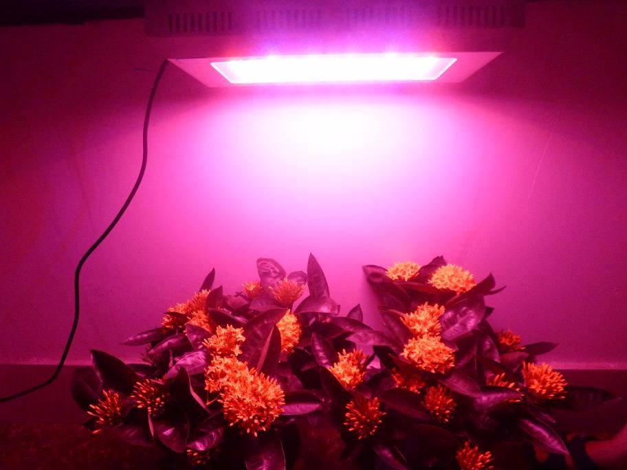 led lampe pour plantes poussent feuilles persistantes floraison led l vent la lumi re pour. Black Bedroom Furniture Sets. Home Design Ideas