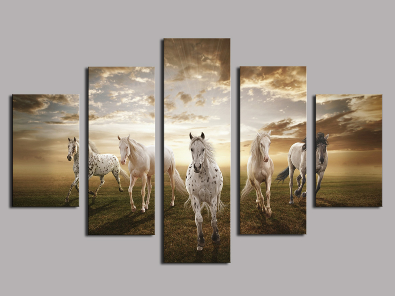 Latest Unframed 5 Pcs High Quality Cheap Art Pictures Running Horse