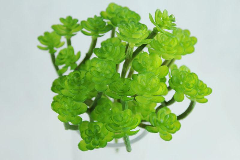 k nstlichen mini pflanzen kaufen billigk nstlichen mini pflanzen partien aus china k nstlichen. Black Bedroom Furniture Sets. Home Design Ideas
