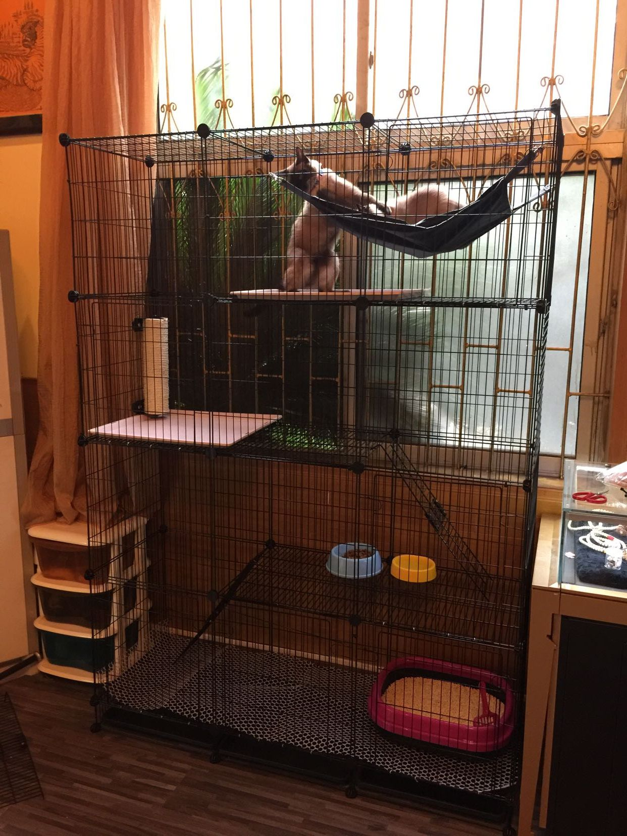 Popular Big Cat Cages Buy Cheap Big Cat Cages Lots From