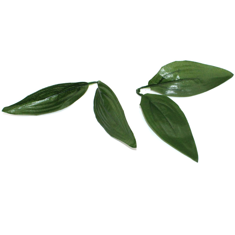 Popular Lily Green Buy Cheap Lily Green Lots From China