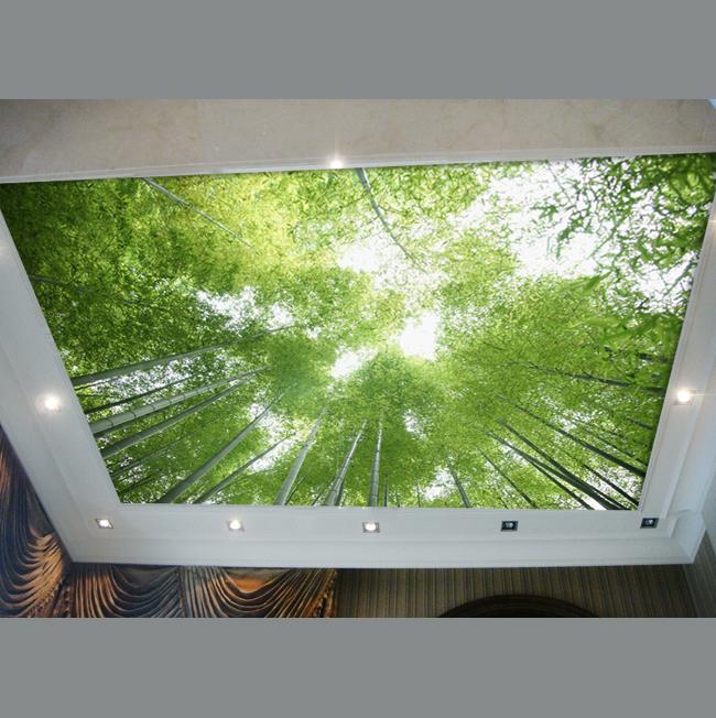 freies verschiffen decke tapete bambus tapete von verl sslichen landschaft. Black Bedroom Furniture Sets. Home Design Ideas