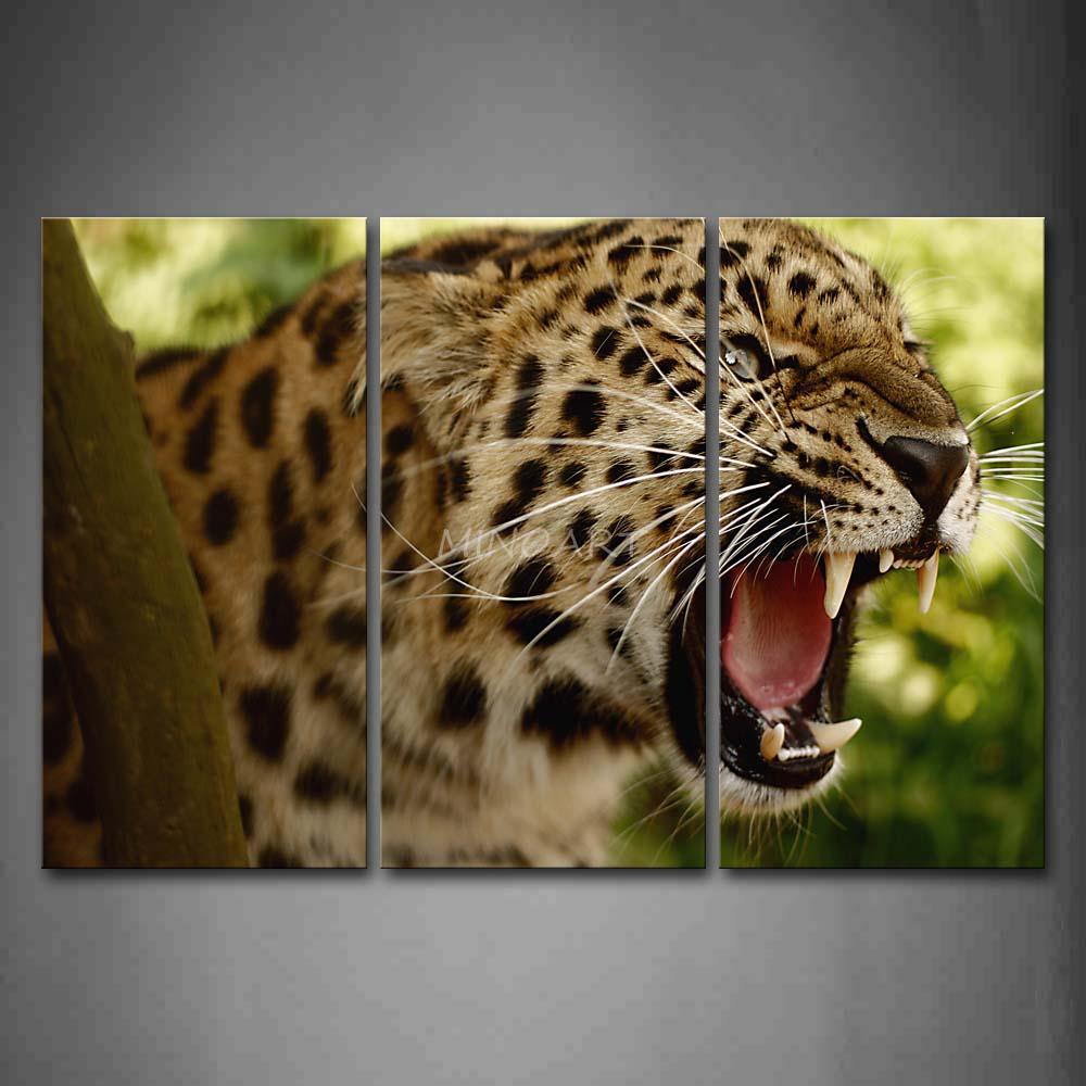 Jaguar Head: 3-Piece-Wall-Art-Painting-Jaguar-Head-Open-Mouth-Picture