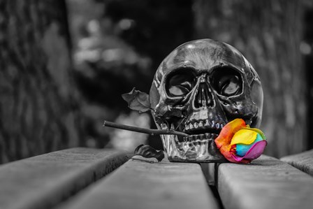 skull selective coloring death spooky Gothic Home Decoration Canvas Poster