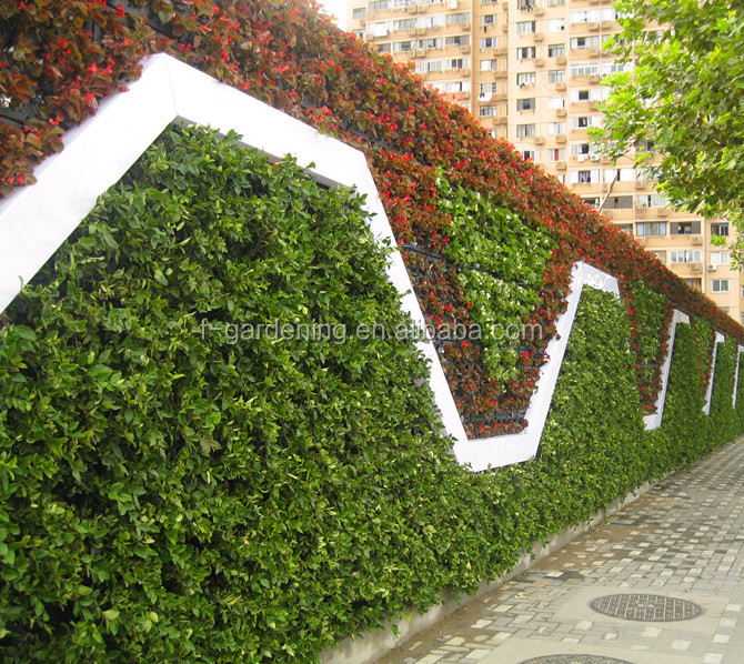 Vertical Garden System Decorative Green Wall Panels Flower