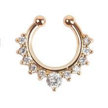 1 шт., кольцо для пирсинга носа с искусственным цветком, кольцо для пирсинга в форме сердца, кольцо для пирсинга из искусственной перегородки(China)